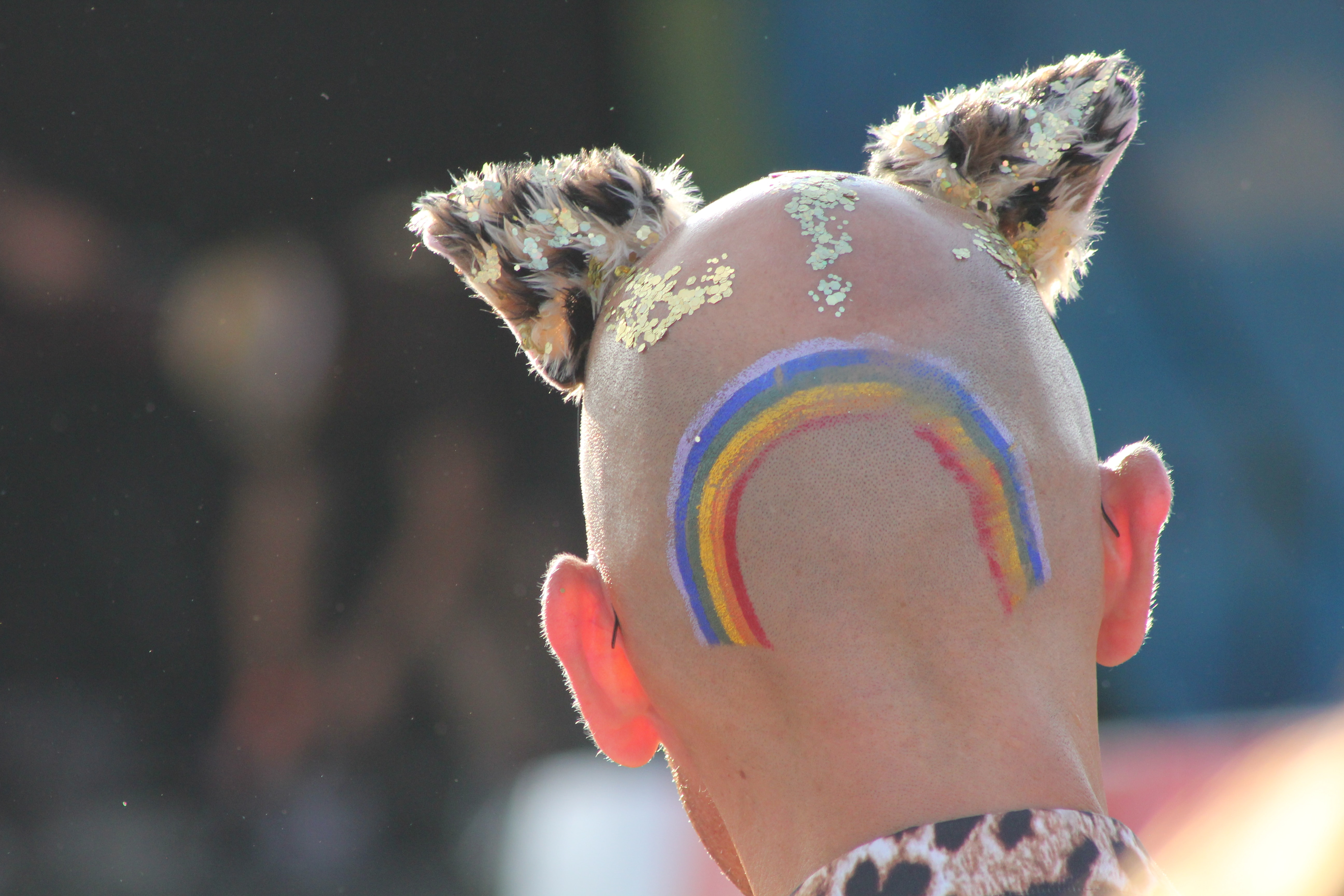 back of someone's head with a rainbow painted on it and who is also wearing cat ears