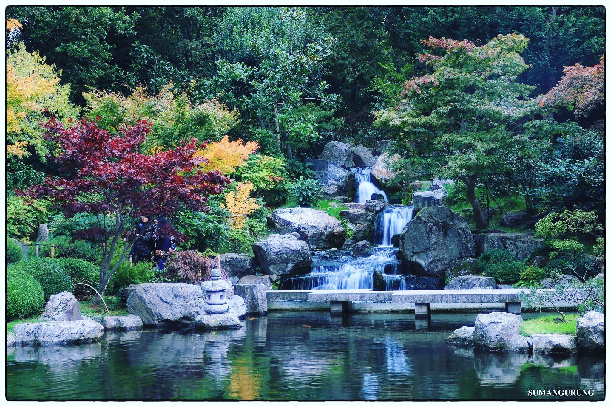 holland-park-kyoto-garden-london